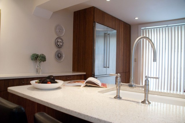 Dankoff Residence contemporary-kitchen
