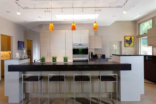 decatur residence contemporary kitchen atlanta by poggenpohl atlanta. Black Bedroom Furniture Sets. Home Design Ideas