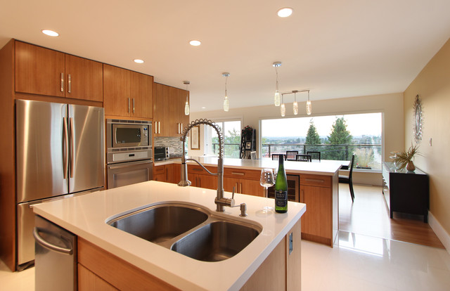 Delta Residence contemporary-kitchen