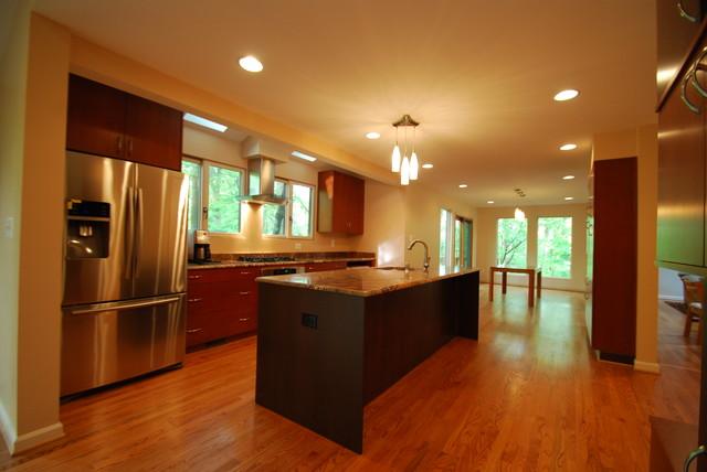 Derwood contemporary-kitchen