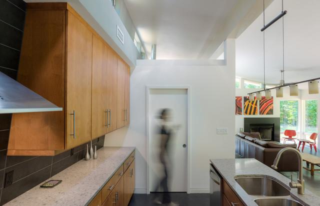 Dog Trot House Charlottesville Va Modern Kitchen Richmond By Hays Ewing Design Studio
