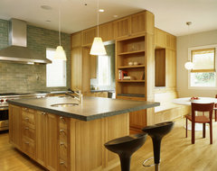 Schwartz and Architecture contemporary kitchen