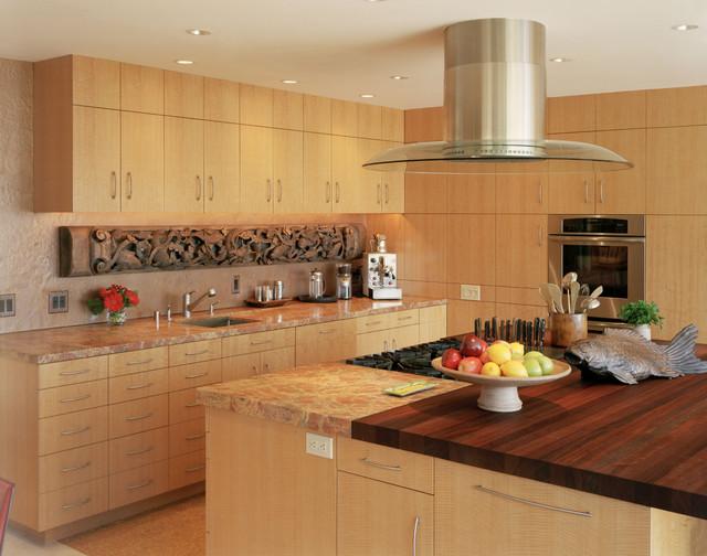 Douglass street contemporary-kitchen