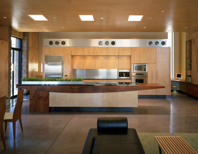 Downing Residence contemporary-kitchen