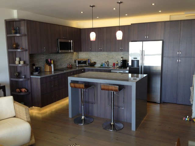 Perfect Downtown Charleston Contemporary Condo. HWC Custom Cabinetry, Black Limba  Venee Moderne Cuisine