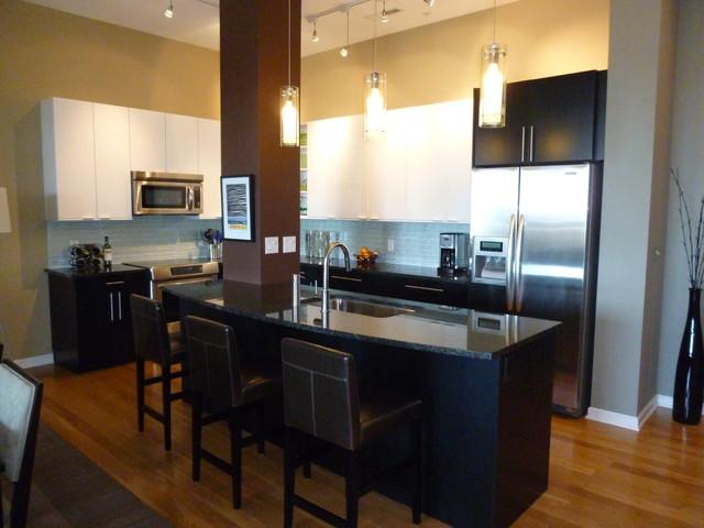 Downtown Cincinnati Loft Contemporary Kitchen Cincinnati By Cooknee Euro Style Cabinets