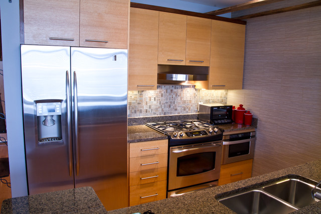 downtown madison wi condo eclectic kitchen milwaukee by dc