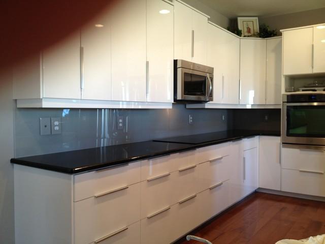 Dreamline Glass contemporary-kitchen
