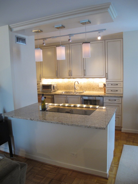 Dresner Design Small Galley Kitchen In Chicago Traditional Kitchen Chicago By