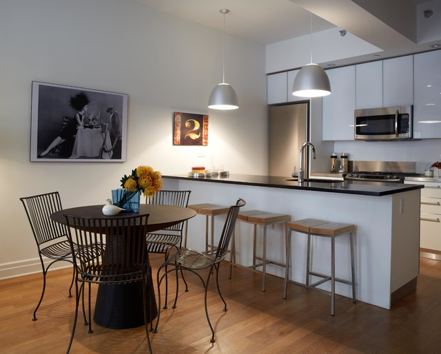 Dumbo modern interior design 1 bedroom apartment modern kitchen new york by b moore - Decorate one bedroom apartment ...