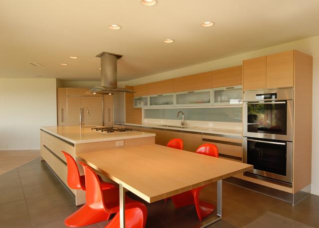 Dwane modern-kitchen