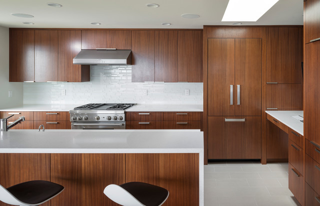 Dyna - Olympic Manor contemporary-kitchen