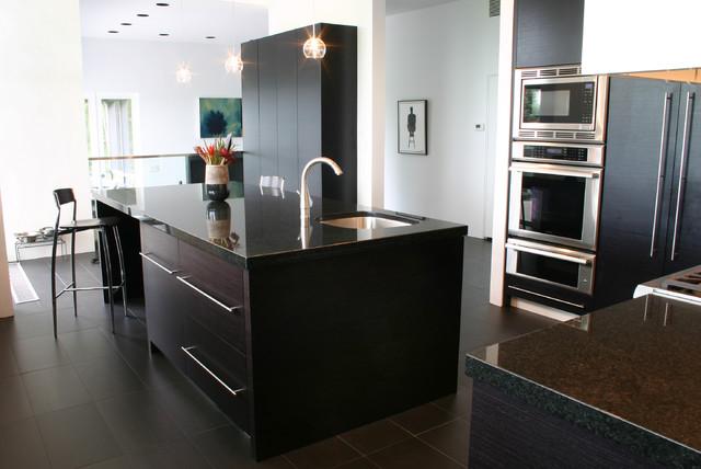 Ebony kitchen modern-kitchen