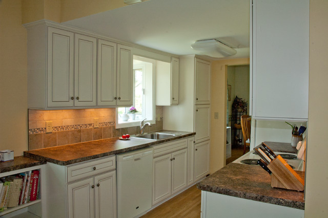 Economical Solution to Galley Kitchen Update traditional-kitchen