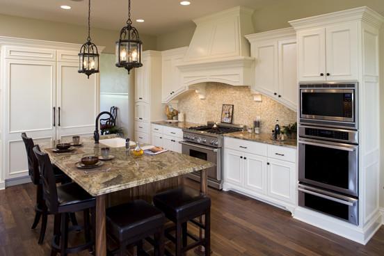 Eden Prairie New Home traditional-kitchen