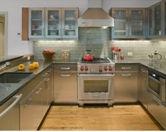 Eisner Design contemporary-kitchen
