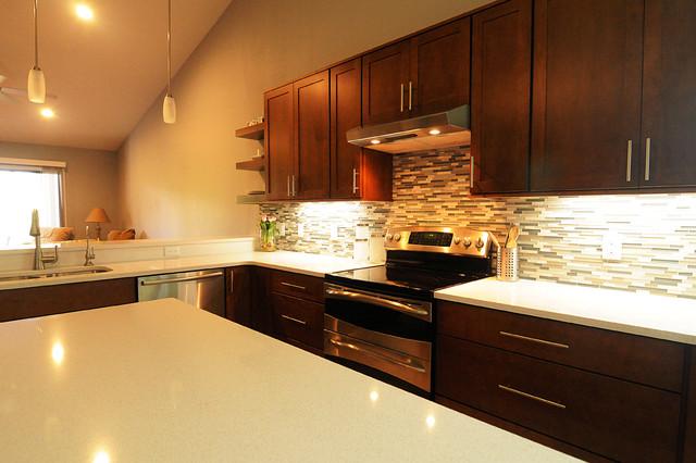 Elegant Contemporary MasterBath - Contemporary - Kitchen - orlando - by S&W Kitchens