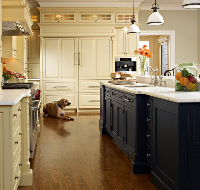 Elegant kitchens traditional kitchen new york by for Elegant traditional kitchens