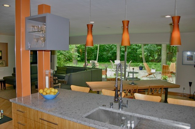Reinvented Ranch contemporary-kitchen