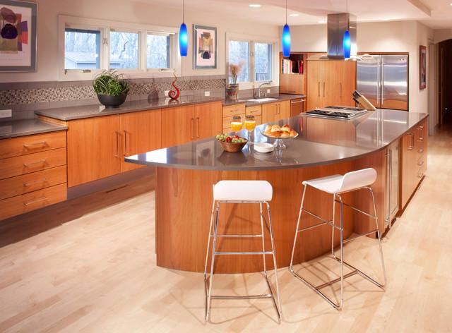 Empty-Nester Haven contemporary-kitchen