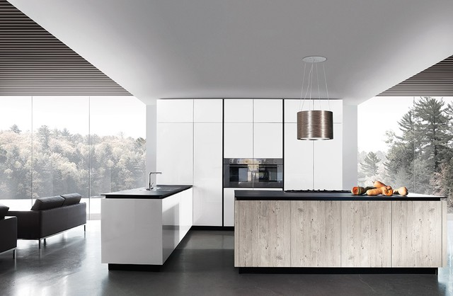 European Kitchen Cabinets Modern Kitchen Los Angeles By La Mordern Kitchen