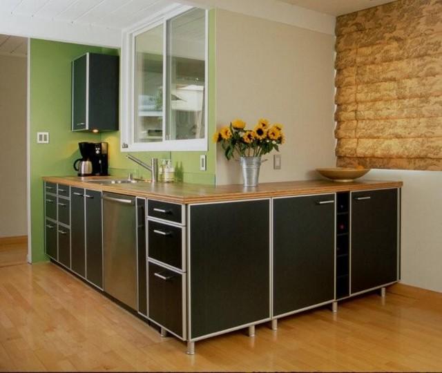 European Kitchen Design Eichler Mountain View - Alno Tech Kitchen modern-kitchen