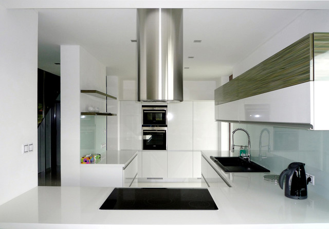 Family House Interior contemporary-kitchen
