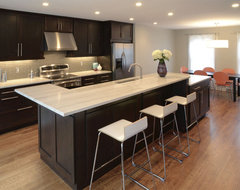 Farmsworth Residence transitional-kitchen