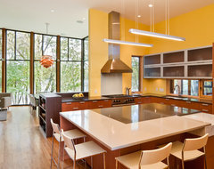 Farquar Lake Residence modern kitchen