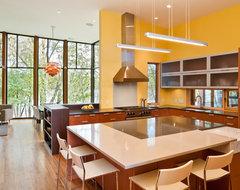 Farquar Lake Residence modern-kitchen