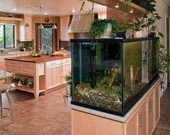 Fish Tank Room Break transitional-kitchen
