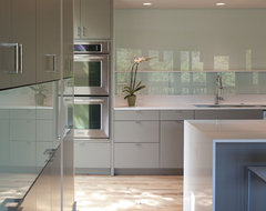 Foxtree Cove modern-kitchen