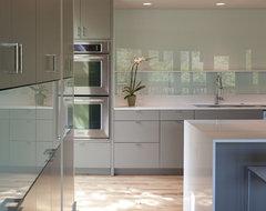 Foxtree Cove modern-kitchen