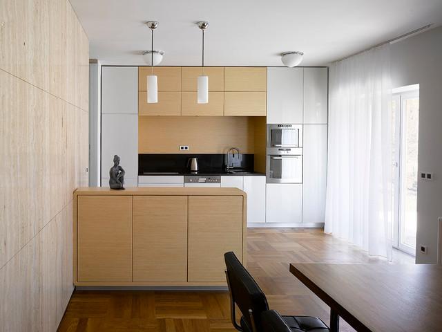 FUNCTIONALIST VILLA modern-kitchen