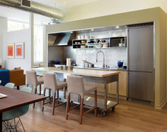 Gallery Loft modern kitchen