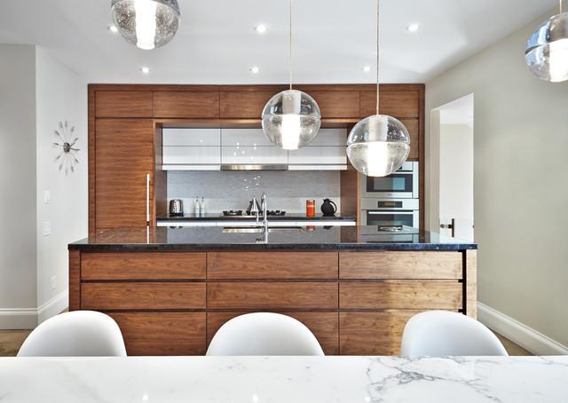 Galley Avenue Residence modern-kitchen