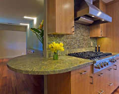 Galley Kitchen Design modern-kitchen
