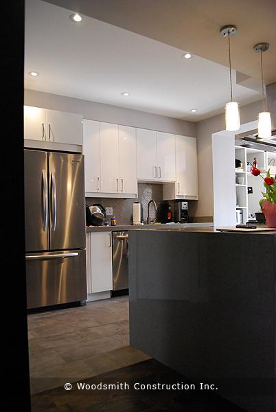 Modern Toronto Kitchen contemporary-kitchen