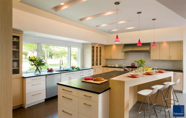 Game Changer modern-kitchen