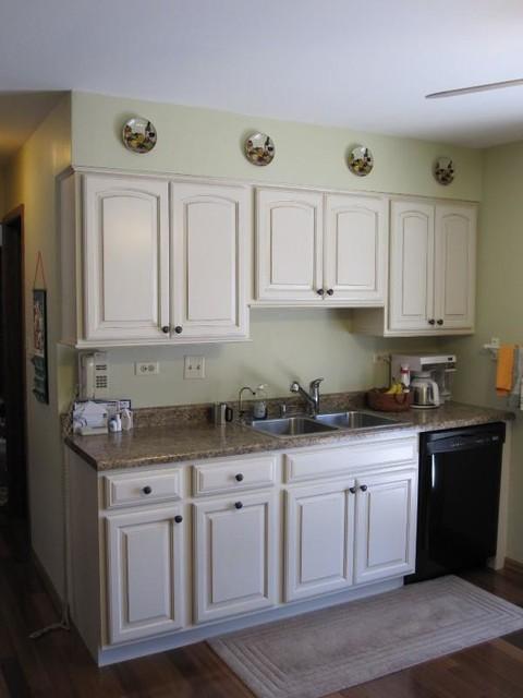Gannet Lane, Bolingbrook IL traditional-kitchen