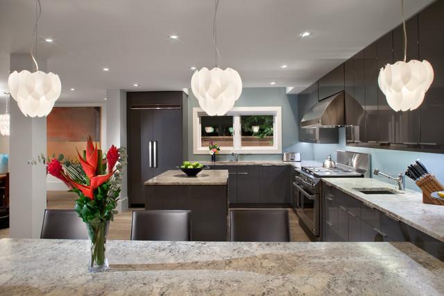 Garden House - kitchen modern-kitchen