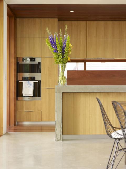 Garrett House contemporary-kitchen