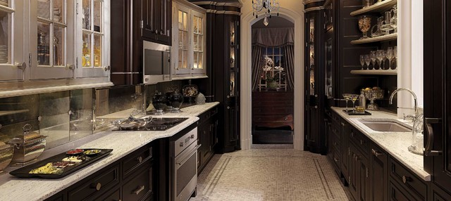 GE Monogram Compact Penthouse Kitchen traditional-kitchen