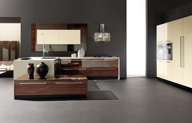 Gloss polyester Kitchen Cabinets modern-kitchen