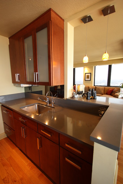 Gold Coast High-Rise Condo & Kitchen Gut Renovation And