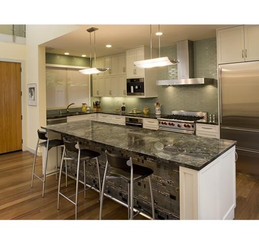Golden Gateway modern-kitchen