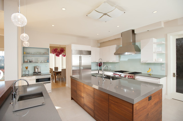 Gourmet kitchen contemporary kitchen other by eddy for Best mid priced kitchen cabinets