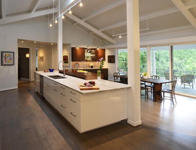 Grandin Residence modern-kitchen