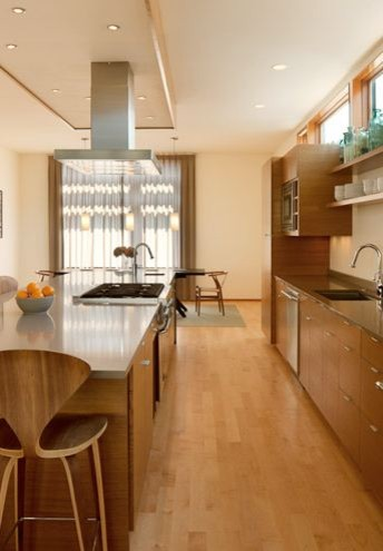 Green Lake modern kitchen