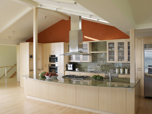 green remodel contemporary kitchen